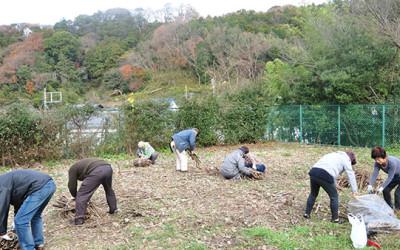 空き地・草刈り後の整備~汚水処理場跡地の活用を目指して