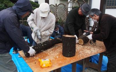 第1回TSKIシイタケ種菌植付けイベントを実施しました。