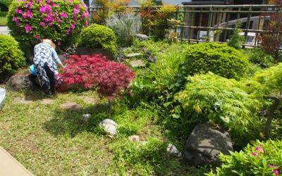 いずみサロンの草刈り・剪定を行う(4月30日)