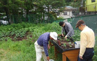 菜園サークル「いずみガーデン」の発足