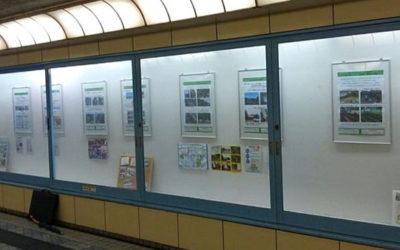 今泉台町内会・NPO TSKI連携で長寿社会のまちづくり:鎌倉駅地下道ギャラリーに展示しました。