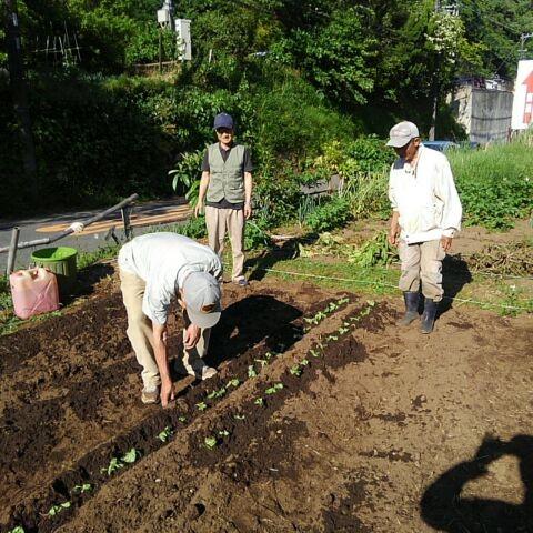 さわやかセンター横・NPO新菜園で5月4日に作業開始!
