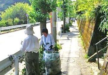 暑熱の早朝、3ケ所同時に「今泉台緑地ボラ活」で地域の防犯・防災を目指す!