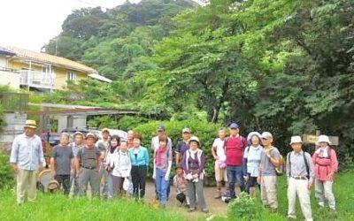 NPO健康ハイキング:涼しかった初夏の思い出