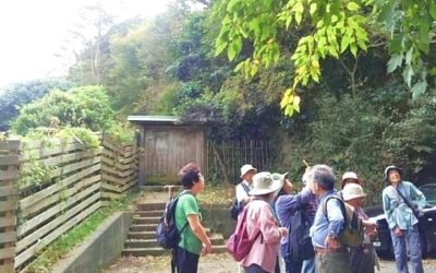 健康ハイク第10回:「秋の北鎌倉~台峰を歩く」