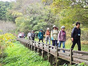 健康ウオーク第31回:「尾根道を歩いて中央公園へ」
