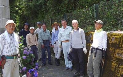 初夏 ツツジ花後の緑の保全ボラ活で安全・安心!(H31,6月)