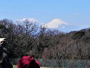 3月15日 TSKI健康ハイク:絶好天の中、新装一部開園の「台峰緑地」を歩く!