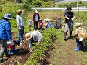 菜園グループ活動報告