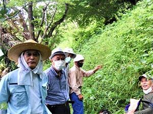6月 緑地ボランティア・ヤマユリの会 保全活動を開始